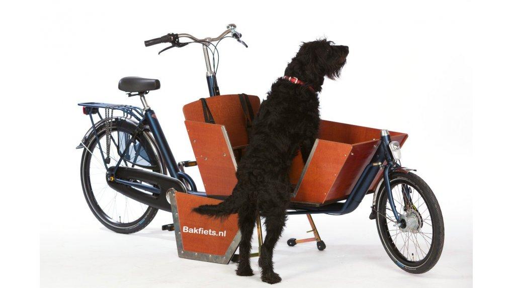 Coffre Bakfiets.nl avec porte pour chien