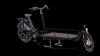 Biporteur livreur Bakfiets.nl XL avec options