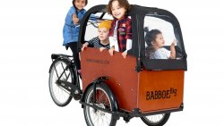Babboe Big triporteur nexus 7