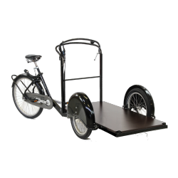 triporteur Pro 250 taille standard