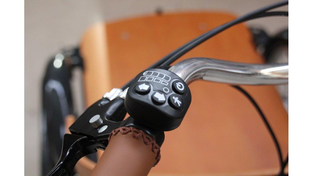 Console E-Curve pour biporteur ou triporteur Babboe